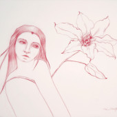 Glance (Lily with Leaf) Conte on vellum 25
